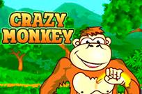 Crazy Monkey игровые автоматы