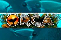 Orca игровые автоматы